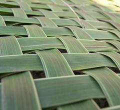 un tapis de verdure par Philofoto