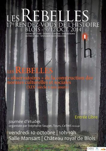 Affiche Journée d'études Rebelles Blois 2014.ai