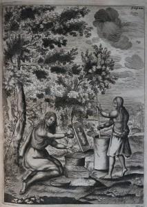 Gravure sur cuivre placée entre les p. 22-23. Père François du Creux, Historiae Canadensis seu Novae-Franciae…