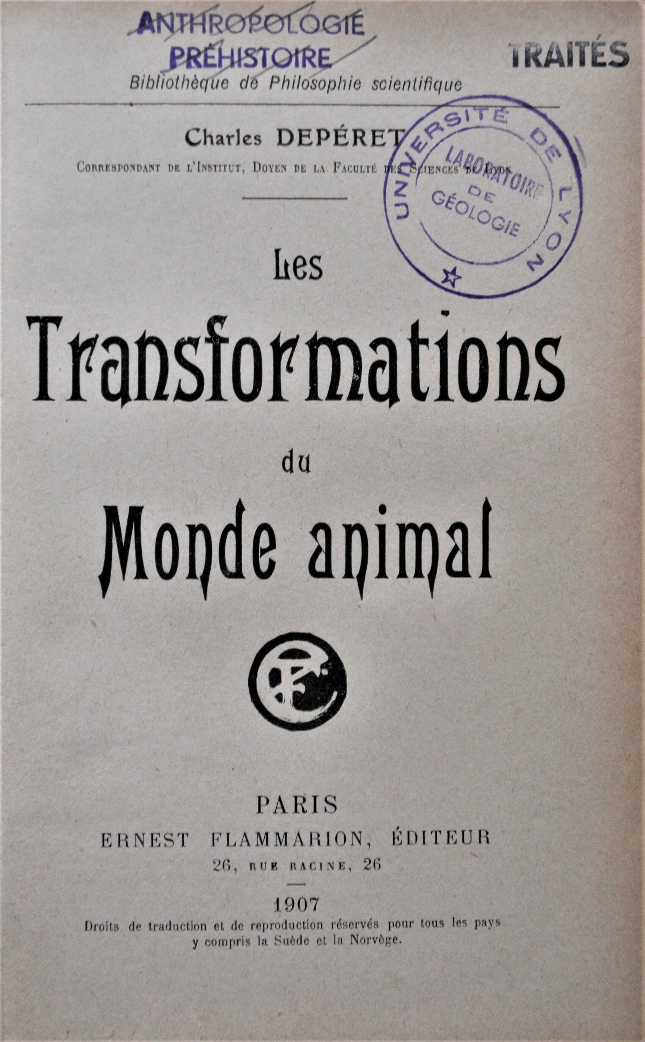 ill 5, V2transfo monde animal (option 2)