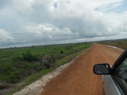 Des terres en cours de transformation en plantations aux portes d'Abidjan, cliché E. Mesclier, avril 2013