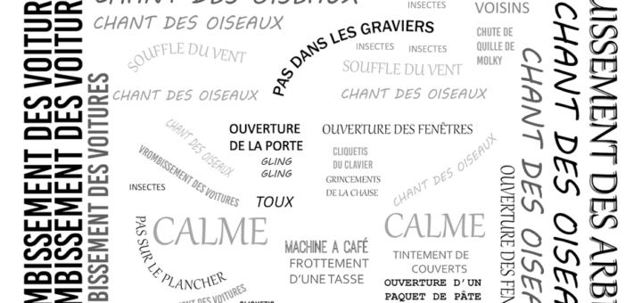 """Carte 1 : La multitude des sons du quotidien. Groupe """"Transect sonore d'une journée de confinement"""""""