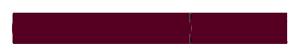 geschichtscheck_logo_600