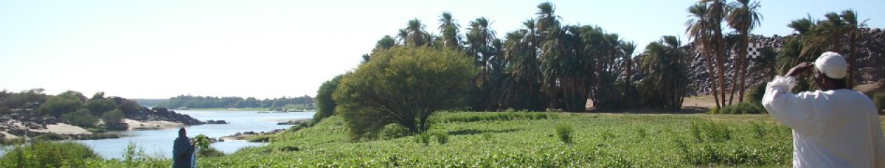 Researching Sudan – A perspective on contemporary Sudans
