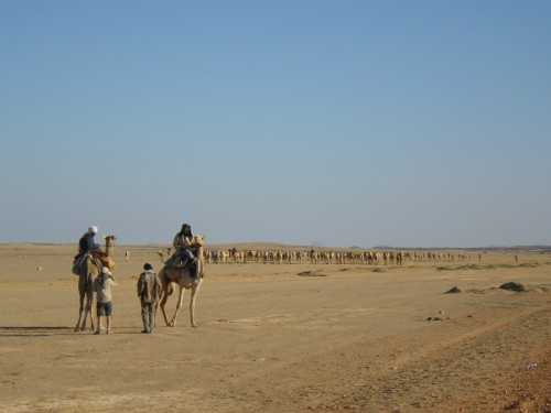 An interview with the nomads coming from Darfur and going to Egypt (Sedeinga, Sudan, November 2013) © Coralie Gradel