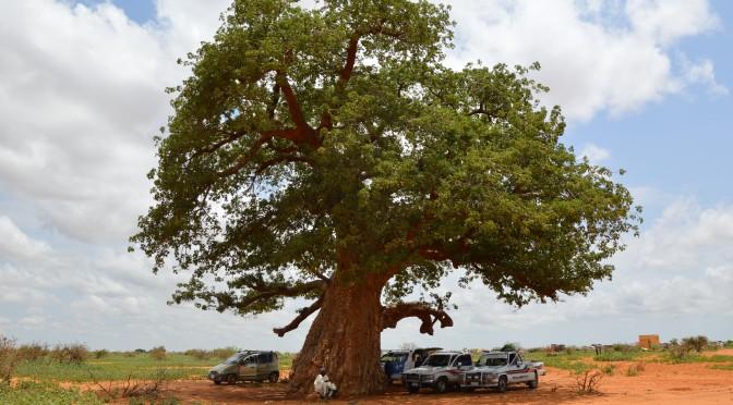 Note de terrain – Réflexions sur une tradition soudanaise, par Anne-Laure Mahé