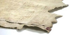 feuille Book History