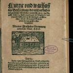 Kurtze und warhafftige Beschreibung / der erschrecklichen und grausamen Wasserflut / welche sich am 12. tag Augusti / dieses 73. Jahrs angefangen im Vogtlande..., s. i., 1573 (Bayerische Staatbibliothek, 4 germ. sp. 382, 18)