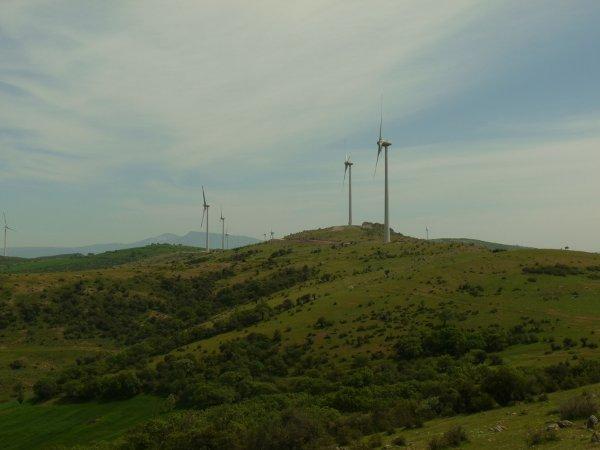Afin de profiter au maximum de l'exposition au vent, les éoliennes ont été implantées sur des crêtes collinéennes (Photo : E.A)