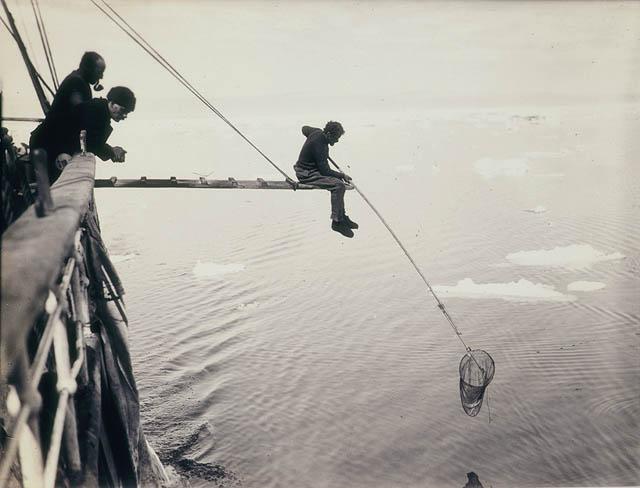 Hamilton hand-netting for macro-plankton from Aurora / by Frank Hurley