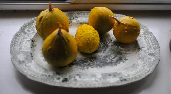 La recette du mois : la pâte de coings sauvages