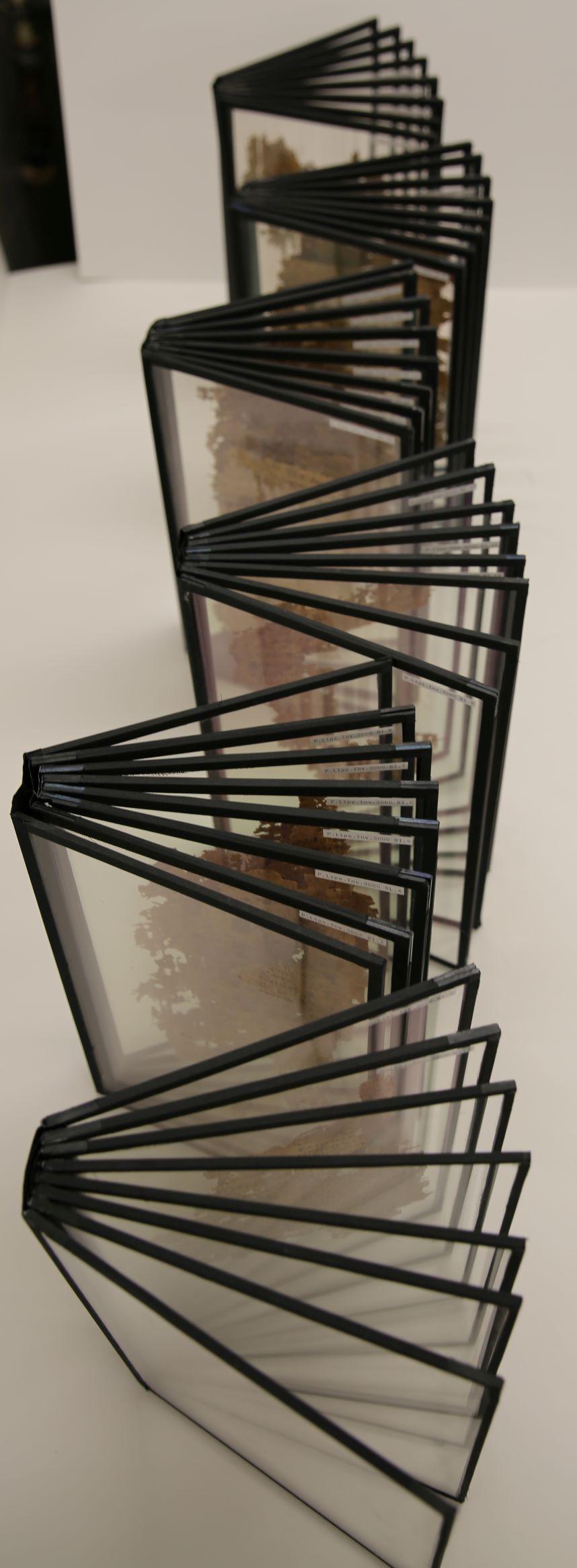 P.Lips. Inv. 3000. Reconstruction