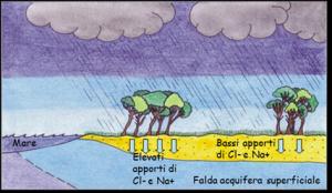 Figura 2B