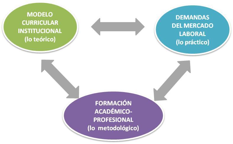 Gráfico 1: COMPONENTES DEL MODELO