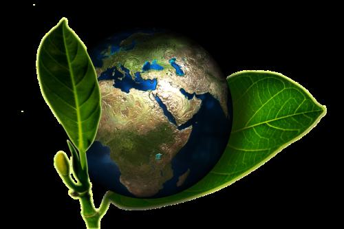 Hervorragend L'innovation au secours de l'environnement ? – Mondes Sociaux PP83