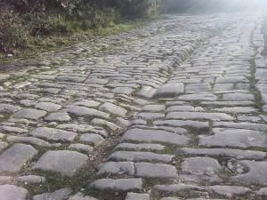 via-romana