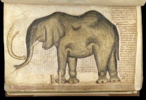 The elephant at the Tower of London (London, British Library, MS Cotton Nero D I. f. 169v).