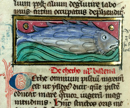 Thomas de Cantimpré, Liber de natura rerum, Valenciennes, BM, ms. 320, f. 111v. Ca 1285.