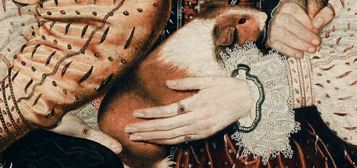 Fig. 8. Detalle del retrato anónimo. Three Unknown Elizabethan Children. National Portrait Gallery, c. 1580.