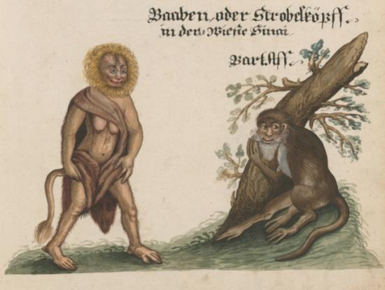 Zentralbibliothek Zürich, Ms. Rh. hist. 161 http://dx.doi.org/10.7891/e-manuscripta-681