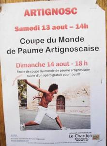 Affiche 2011, photographie  de Marie-Véronique Amella