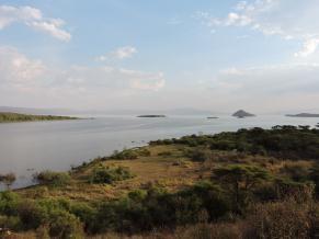 Fig. 5. Wetlands of Lake Chamo, Nechsar National Park (© R. Moreaux)