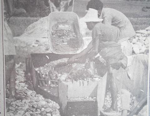 TERRAIN/FIELDWORK: A History of Mining in Wallaga