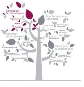 fondation-de-france-arbre