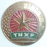 BadgeTNXP_VN