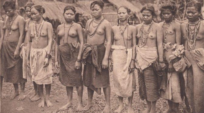 Exhiber l'exhibition ? Quand les historiens font débat : retour sur « Sexe, race et colonies »