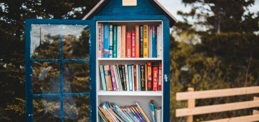 bibliothèque_de_rue