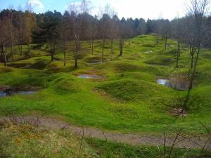 Forêt de Verdun