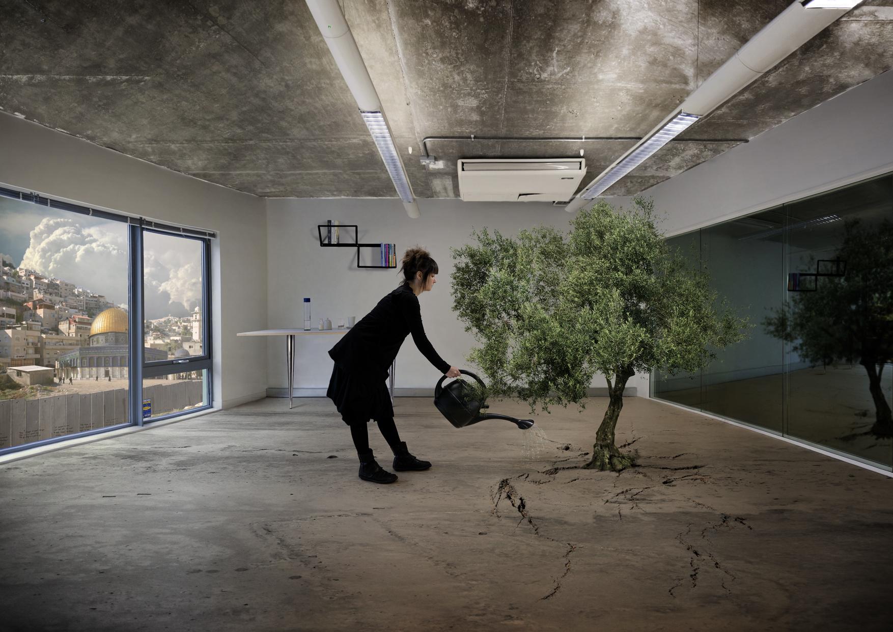 Nation Estate Olive Tree n°1 – Larissa Sansour