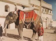 Ein Bild, das Stéphane Passet im Dezember 1913 aufnahm, zeigt zwei Männer mit einem Elefanten vor einem Königspalast in Indien. Foto: Museé Albert Kahn, Départment de Hauts-de-Seine