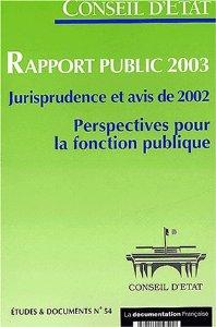 Rapport Public CE 2003
