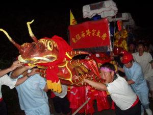 Le scolopendre processionnel, Taiwan (photo : Fiorella Allio)