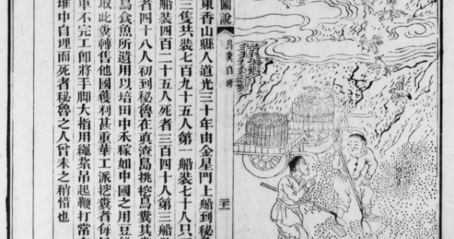 The Sheng diyu tushuo depicts the misfortunes of coolies who mostly worked in sugar plantations, but also constructed railways or, in the case of Peru, harvested guano. Here is the case of a coolie unexpectedly buried alive under a mountain of guano.