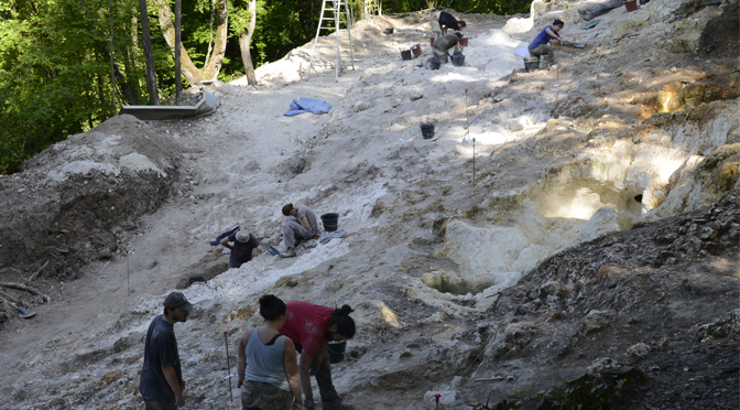"""Vue du site de Vert-la-Gravelle """"La Crayère"""" en cours de fouille, en 2016"""