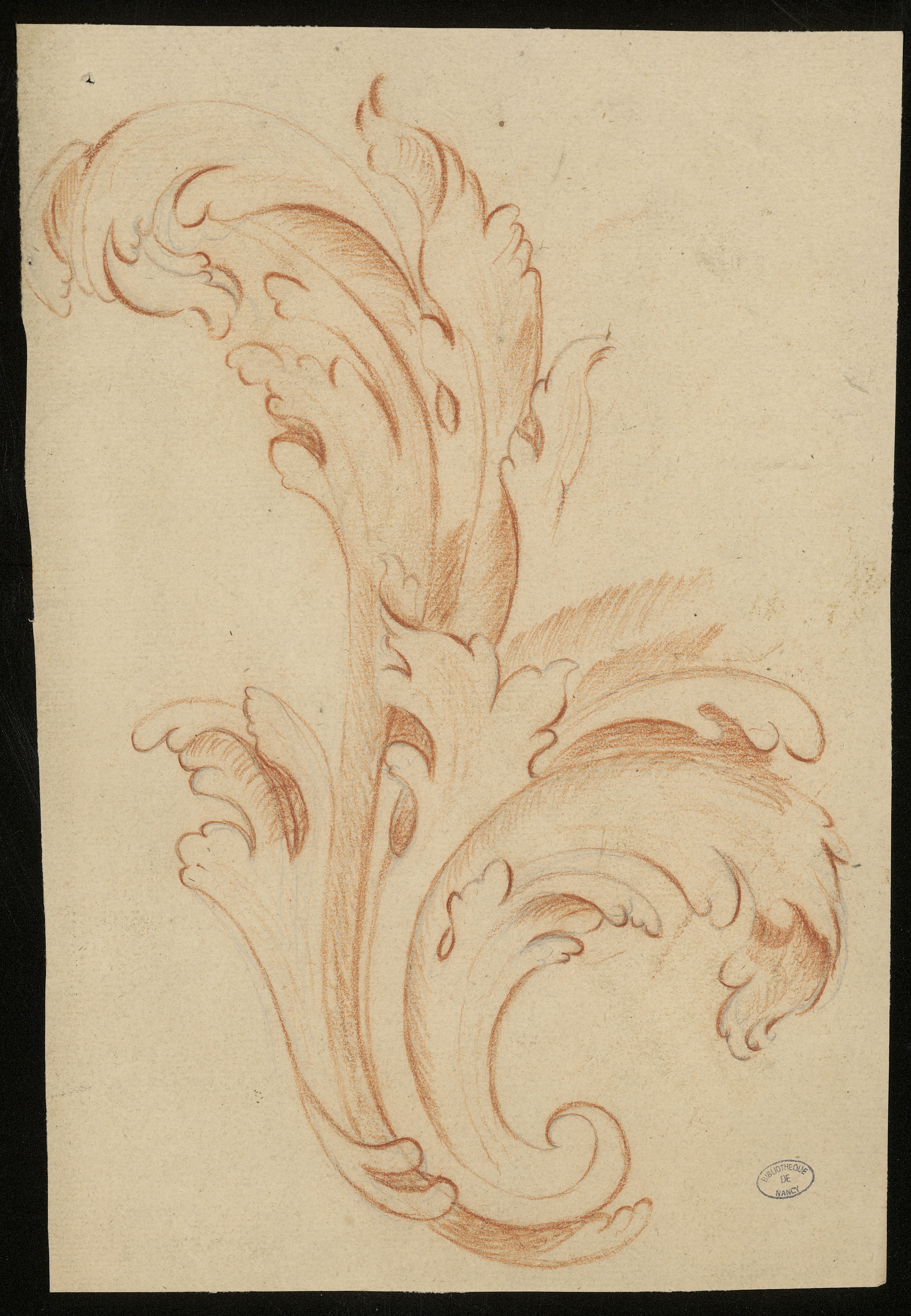Motif d'ornement : feuille d'acanthe, anonyme