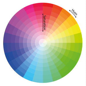 cercle coloré