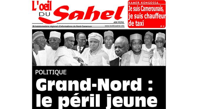 Les violences dans l'Extrême-Nord du Cameroun : le complot comme outil d'interprétation et de luttes politiques, par Marie-Emmanuelle Pommerolle