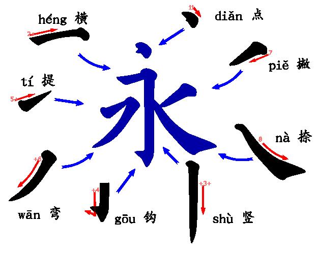 typologie-des-traits-永