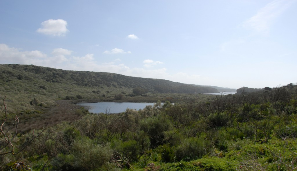 Lagune sidi Boughaba