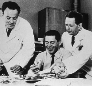 André Lwoff, à droite aux côtés de François Jacob et Jacques Monod