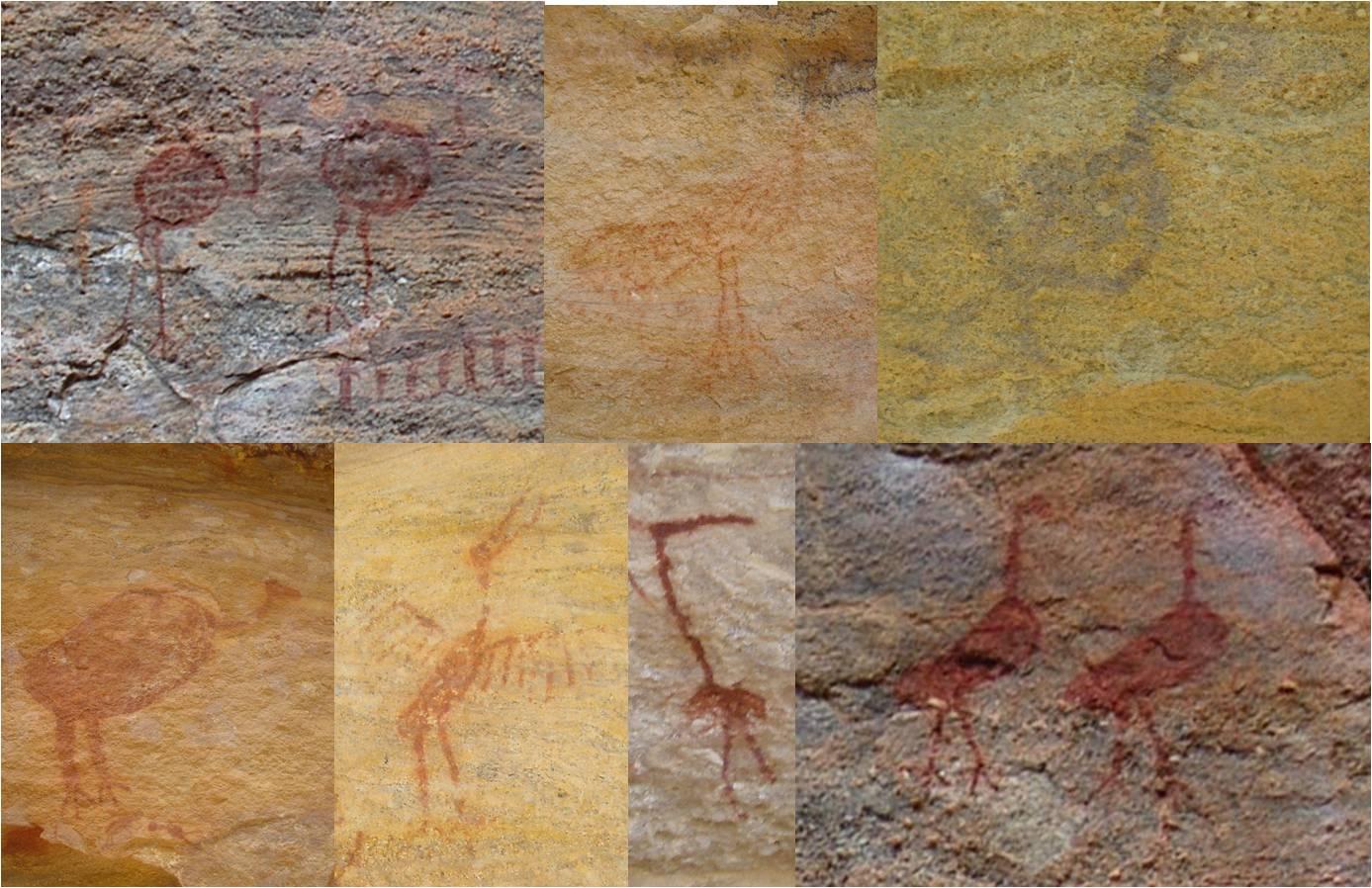 Figure 1 - De gauche à droite en haut : Nandou – Toca do Caldeirao do Rodriguez II ; Jacu – Toca do Paraguaio ; Tinamou ? – Toca das Quincas ; en bas : Urubu – Toca do Entrada do Baixo da Vaca ; Jabiru – Toca do Paraguaio ; Toca do Caldeirao das Canoas ; échassiers, Seriema ? – Toca do Caldeirao do Rodriguez II © P. Binant