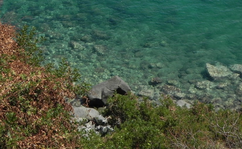 «Lace: Greek OCR»: plus de 600 éditions de textes grecs avec reconnaissance de caractères