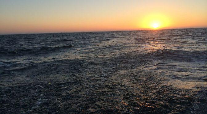 La brise de mer venue du BREXIT