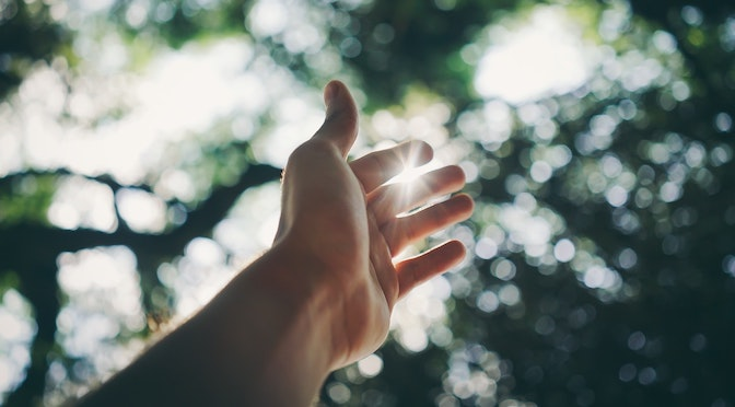 Main tendu vers le soleil perçant entre des branchages