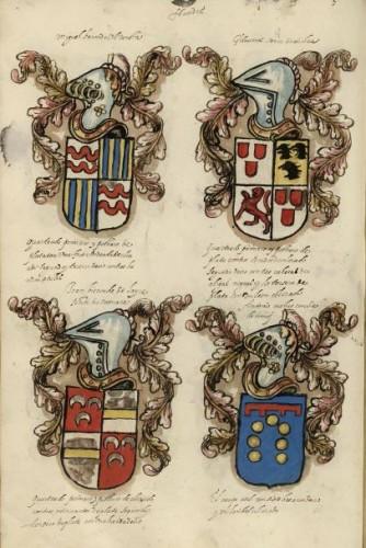 Armas de diversos linajes flamencos