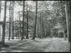 """Die Industriestadt Castrop-Rauxel bewirbt auch den Wald am Stadtrand. (Quelle: Film """"Grüne Insel im schwarzen Revier"""")"""